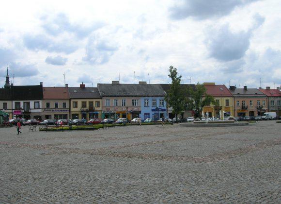 Online reeks: Moderne Poolse literatuur